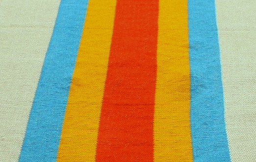Multicolored Mexican Runner Close-Up
